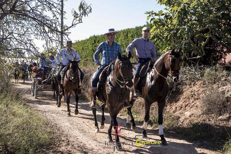 ¿Te animas a participar en una ruta ecuestre en el parque natural de la Calderona?